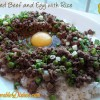 Minced Beef and Egg with Rice<br>(窩蛋免治牛肉飯)